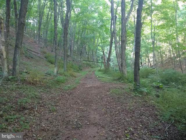 off Raystown Road, HOPEWELL, PA 16650 (#PABD102440) :: LoCoMusings