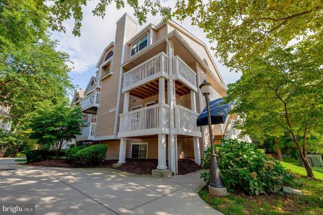 10805 Hampton Mill Terrace #120, ROCKVILLE, MD 20852 (#MDMC722174) :: Jennifer Mack Properties