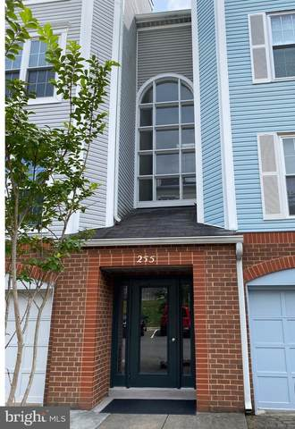 255 S Pickett Street #102, ALEXANDRIA, VA 22304 (#VAAX250052) :: Debbie Dogrul Associates - Long and Foster Real Estate