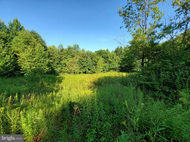 30 Woodstream Ct- Lot 30/The Highlands, GRANTSVILLE, MD 21536 (#MDGA133358) :: Great Falls Great Homes