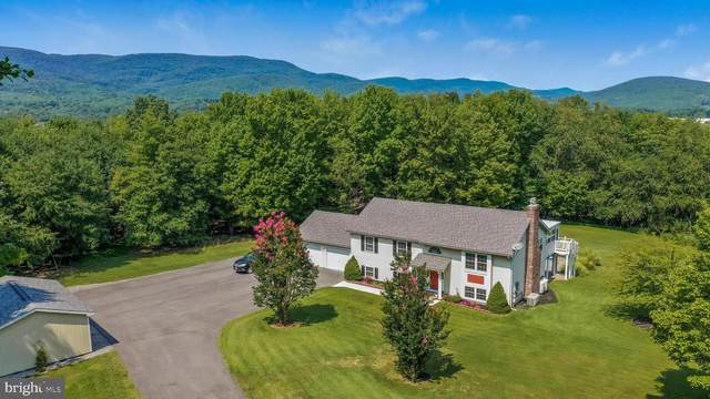 14000 Pinto Hill Drive, PINTO, MD 21556 (#MDAL135016) :: Pearson Smith Realty