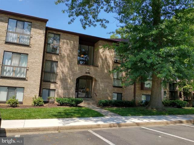 2054 Royal Fern Court 2B, RESTON, VA 20191 (#VAFX1150368) :: Pearson Smith Realty