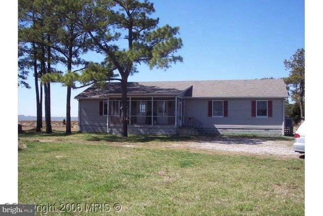 2209 Asquith Island, CRAPO, MD 21626 (#MDDO125938) :: RE/MAX Coast and Country