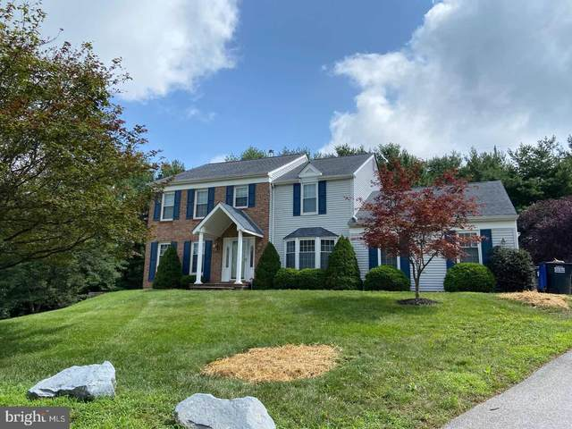 117 E Bridle Path, HOCKESSIN, DE 19707 (#DENC507814) :: RE/MAX Coast and Country