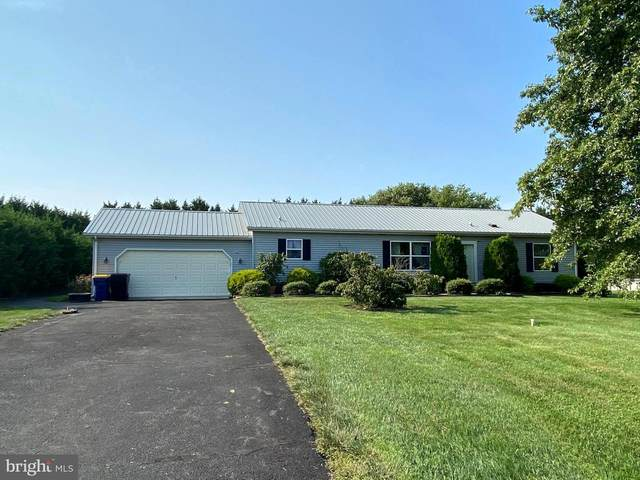 281 Blaine Drive, FELTON, DE 19943 (#DEKT241398) :: Linda Dale Real Estate Experts