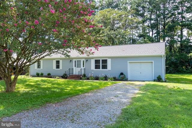 3800 Rumsey Drive, TRAPPE, MD 21673 (#MDTA139036) :: RE/MAX Coast and Country