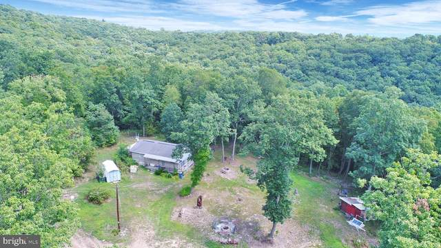 410 Forest Road, MIFFLINTOWN, PA 17059 (#PAJT100832) :: TeamPete Realty Services, Inc