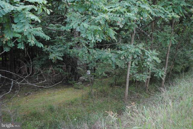 Lot 38 Berenger Drive N, PETERSBURG, WV 26847 (#WVGT103314) :: AJ Team Realty