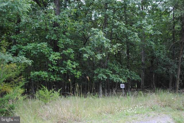 Lot 40 Berenger Drive, PETERSBURG, WV 26847 (#WVGT103316) :: Pearson Smith Realty