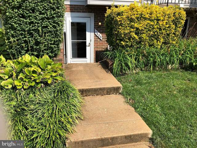 7686 E Arbory Court #241, LAUREL, MD 20707 (#MDPG579060) :: The Putnam Group
