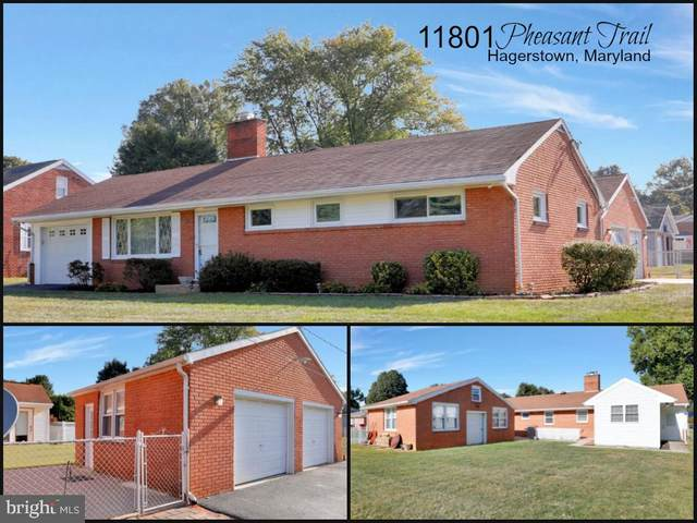 11801 Pheasant Trail, HAGERSTOWN, MD 21742 (#MDWA174250) :: The Riffle Group of Keller Williams Select Realtors