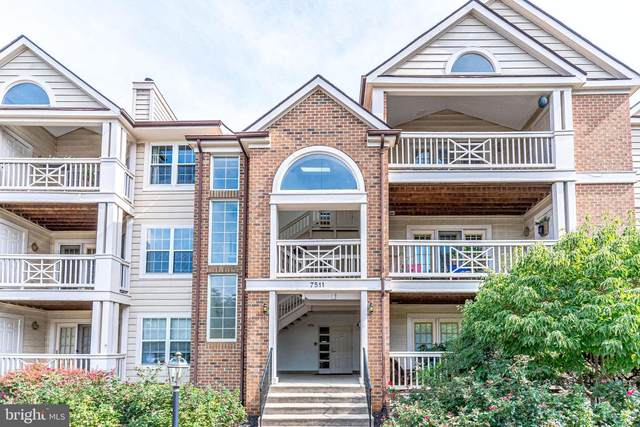 7511 Ashby Lane N, ALEXANDRIA, VA 22315 (#VAFX1151160) :: SP Home Team