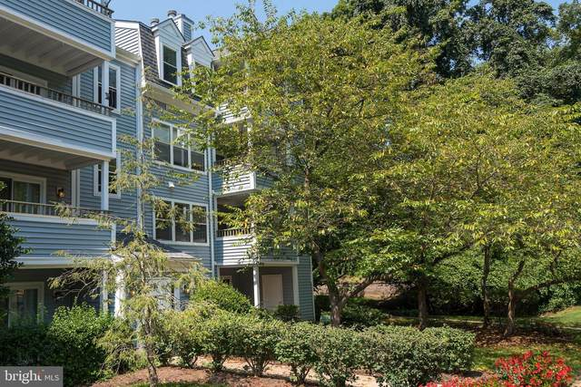7714 Lafayette Forest Drive #32, ANNANDALE, VA 22003 (#VAFX1151236) :: Debbie Dogrul Associates - Long and Foster Real Estate