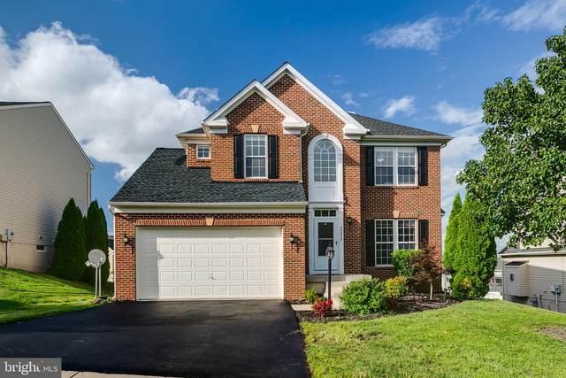 25625 Little Krepps Court, ALDIE, VA 20105 (#VALO419966) :: Debbie Dogrul Associates - Long and Foster Real Estate