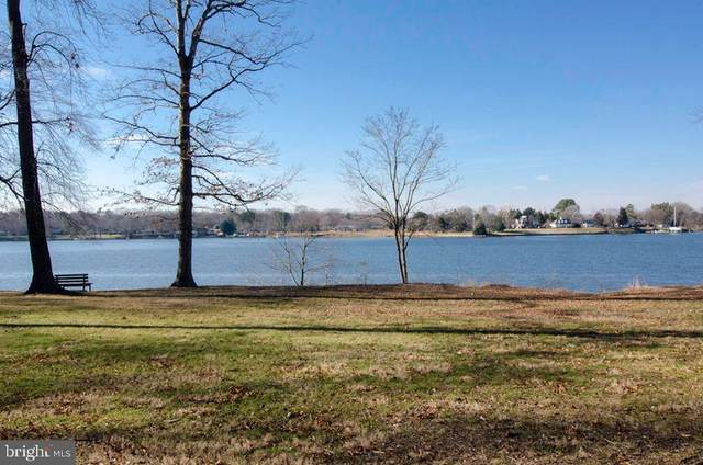 Wye Woods Way, QUEENSTOWN, MD 21658 (#MDQA145094) :: The Riffle Group of Keller Williams Select Realtors