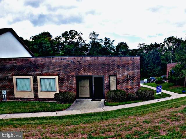 917 Seton Drive, CUMBERLAND, MD 21502 (#MDAL135096) :: Dart Homes