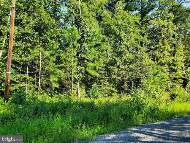 Lot 8 Lakeview Drive, COLONIAL BEACH, VA 22443 (#VAWE117014) :: Debbie Dogrul Associates - Long and Foster Real Estate
