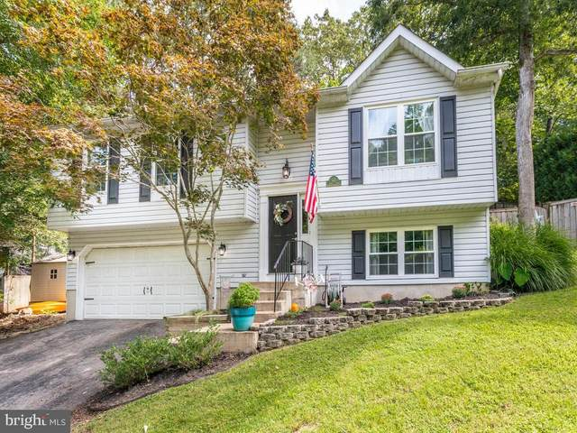 523 Dodge Trail, LUSBY, MD 20657 (#MDCA178352) :: The Redux Group