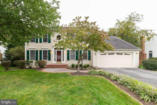 43434 Golden Meadow Circle, ASHBURN, VA 20147 (#VALO420178) :: Colgan Real Estate