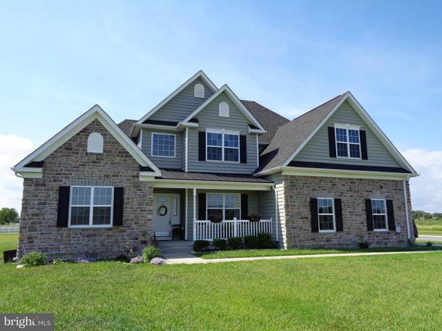 145 Sand Dollar Lane, FREDERICA, DE 19946 (#DEKT241534) :: RE/MAX Coast and Country