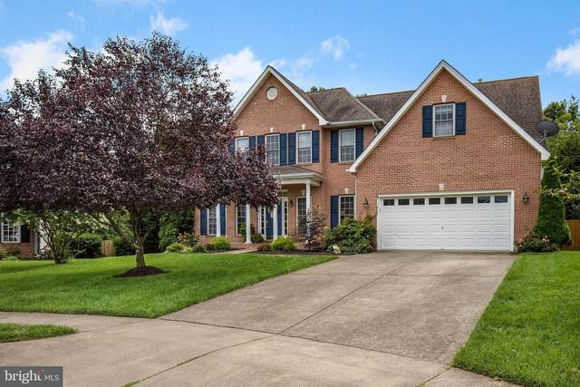 124 Wickham Terrace, WINCHESTER, VA 22602 (#VAFV159522) :: Debbie Dogrul Associates - Long and Foster Real Estate