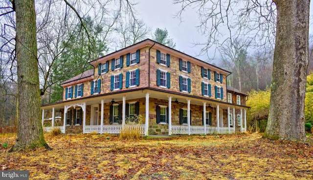 305 Old Forge Road, PINE GROVE, PA 17963 (#PASK132202) :: Ramus Realty Group