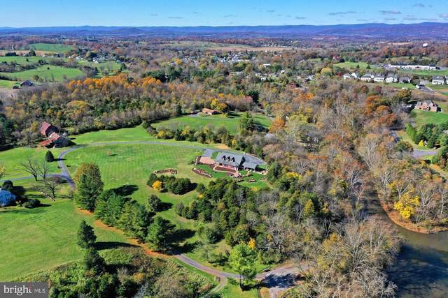 112 Shyrock Lane, EDINBURG, VA 22824 (#VASH120184) :: John Lesniewski | RE/MAX United Real Estate