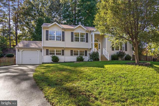 24 Myrtle Road, FREDERICKSBURG, VA 22405 (#VAST225284) :: John Lesniewski | RE/MAX United Real Estate