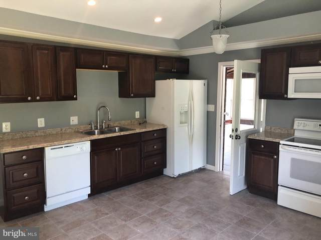 7819 Bertha Road, PASADENA, MD 21122 (#MDAA445294) :: Blackwell Real Estate