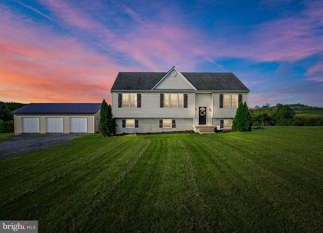 1900 Brucetown Road, CLEAR BROOK, VA 22624 (#VAFV159560) :: Debbie Dogrul Associates - Long and Foster Real Estate