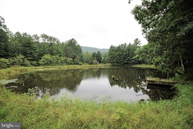 8301 Trout Run Rd, WARDENSVILLE, WV 26851 (#WVHD106320) :: Network Realty Group