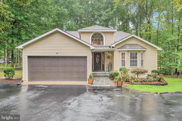 807 Mt Pleasant Drive, LOCUST GROVE, VA 22508 (#VAOR137432) :: Larson Fine Properties