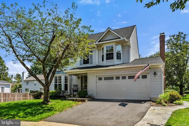 207 Ashford Court NE, LEESBURG, VA 20176 (#VALO420450) :: Debbie Dogrul Associates - Long and Foster Real Estate