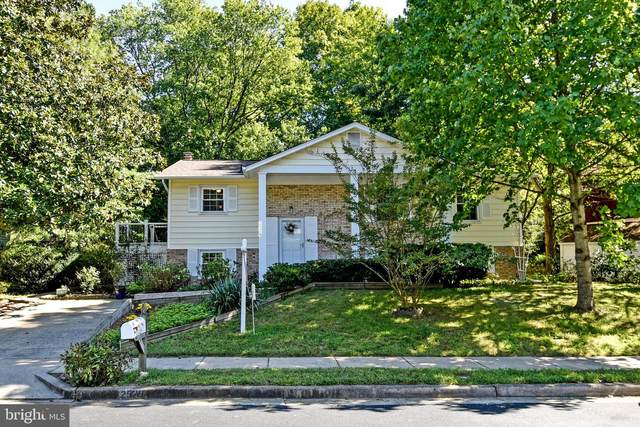 2529 Paxton Street, WOODBRIDGE, VA 22192 (#VAPW503900) :: SP Home Team