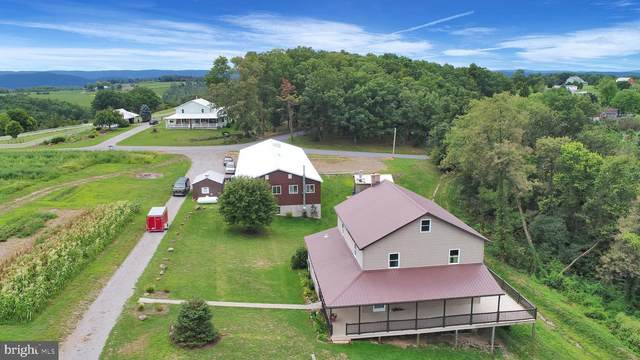 839 Locust Grove Road, PORT TREVORTON, PA 17864 (#PASY100232) :: The Joy Daniels Real Estate Group