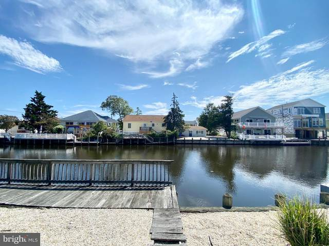 29 Lynn Ann Lane, MANAHAWKIN, NJ 08050 (#NJOC402360) :: John Lesniewski   RE/MAX United Real Estate