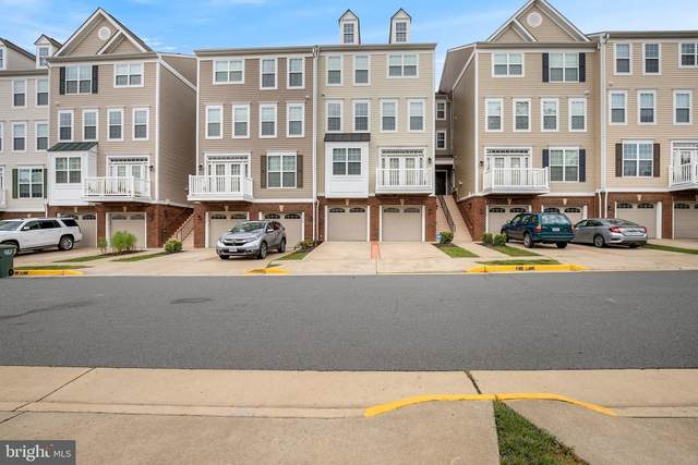 21734 Indian Summer Terrace, STERLING, VA 20166 (#VALO420480) :: Debbie Dogrul Associates - Long and Foster Real Estate