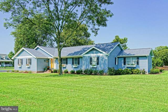 110 Harbinger Drive, LEWES, DE 19958 (#DESU168342) :: Linda Dale Real Estate Experts
