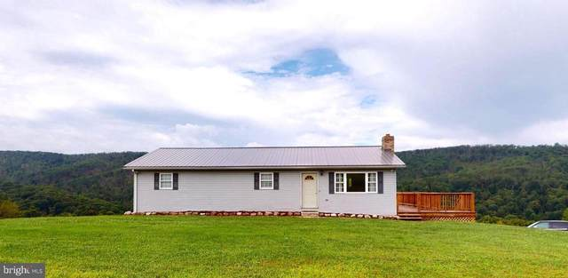 7434 Grassy Lick Road, ROMNEY, WV 26757 (#WVHS114650) :: Network Realty Group