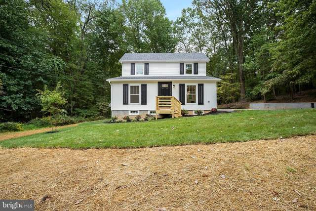 41873 Bald Hill Road, LEESBURG, VA 20176 (#VALO420524) :: Network Realty Group