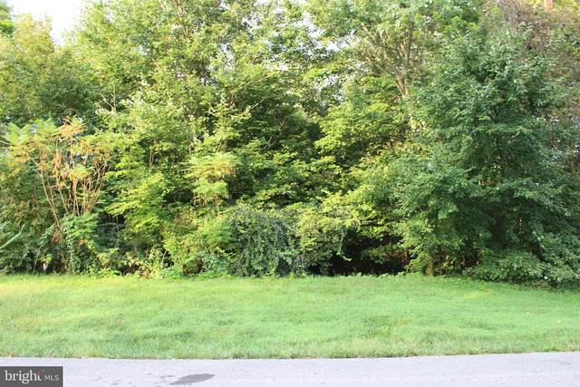 6575 Pullhook Lane, FAYETTEVILLE, PA 17222 (#PAFL175044) :: The Heather Neidlinger Team With Berkshire Hathaway HomeServices Homesale Realty