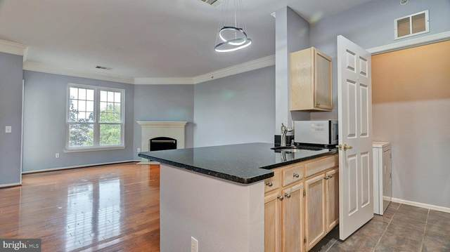 1521 Spring Gate Drive #10405, MCLEAN, VA 22102 (#VAFX1152894) :: RE/MAX Cornerstone Realty