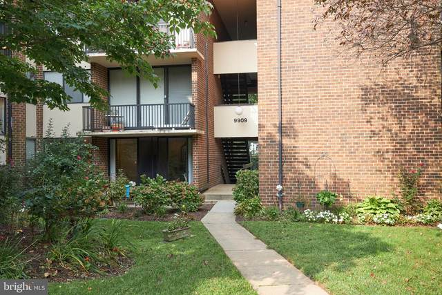 9909 Blundon Drive 4-102, SILVER SPRING, MD 20902 (#MDMC724198) :: Ultimate Selling Team