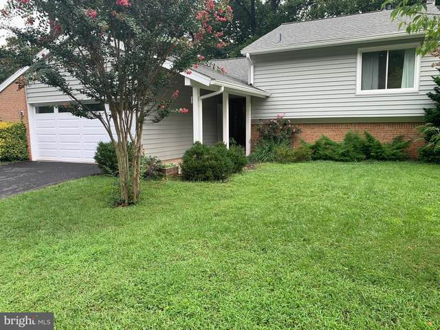 121 Avondale Drive, STERLING, VA 20164 (#VALO420532) :: Debbie Dogrul Associates - Long and Foster Real Estate