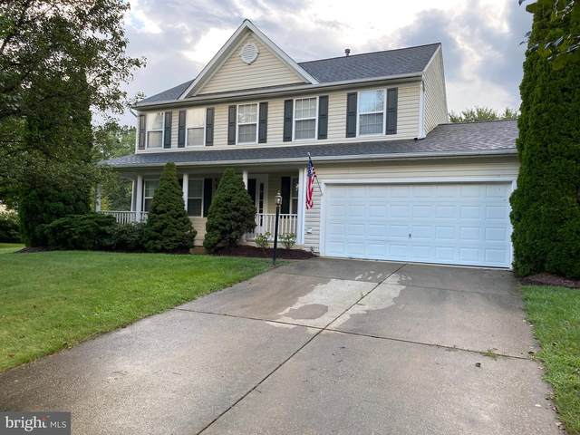613 Wintergreen Drive, PURCELLVILLE, VA 20132 (#VALO420544) :: Debbie Dogrul Associates - Long and Foster Real Estate