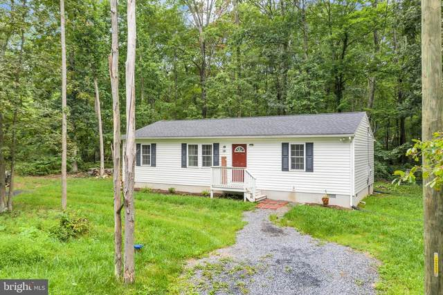 201 Fawn Drive, WINCHESTER, VA 22602 (#VAFV159602) :: ExecuHome Realty