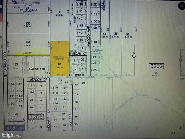 307 N Spring Road, VINELAND, NJ 08361 (MLS #NJCB128738) :: Jersey Coastal Realty Group