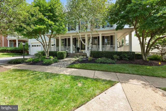 19258 Mill Site Place, LEESBURG, VA 20176 (#VALO420598) :: Pearson Smith Realty