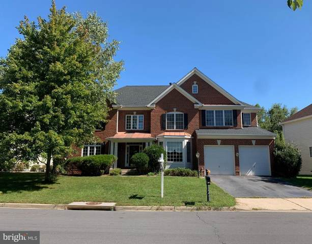 24784 High Plateau Court, ALDIE, VA 20105 (#VALO420600) :: Debbie Dogrul Associates - Long and Foster Real Estate