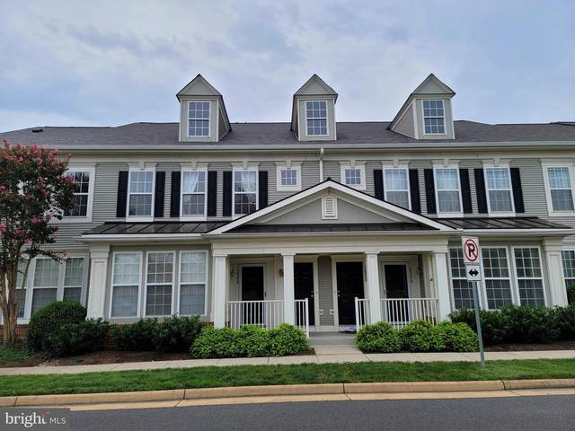 20224 Nightwatch Street, ASHBURN, VA 20147 (#VALO420640) :: Debbie Dogrul Associates - Long and Foster Real Estate